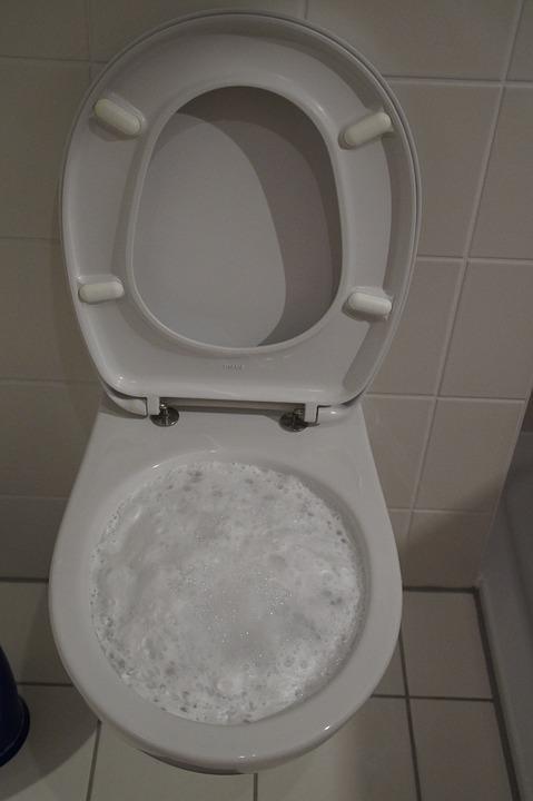 פתיחת סתימה בשירותים מוצפים
